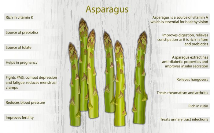Why Asparagus should be a part of your daily diet plan