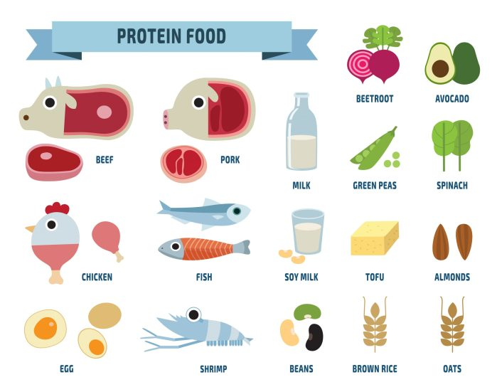 Best sources of complete protein