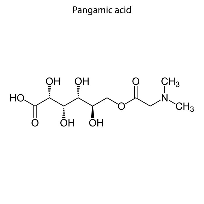 Chemical structure of pangamic acid