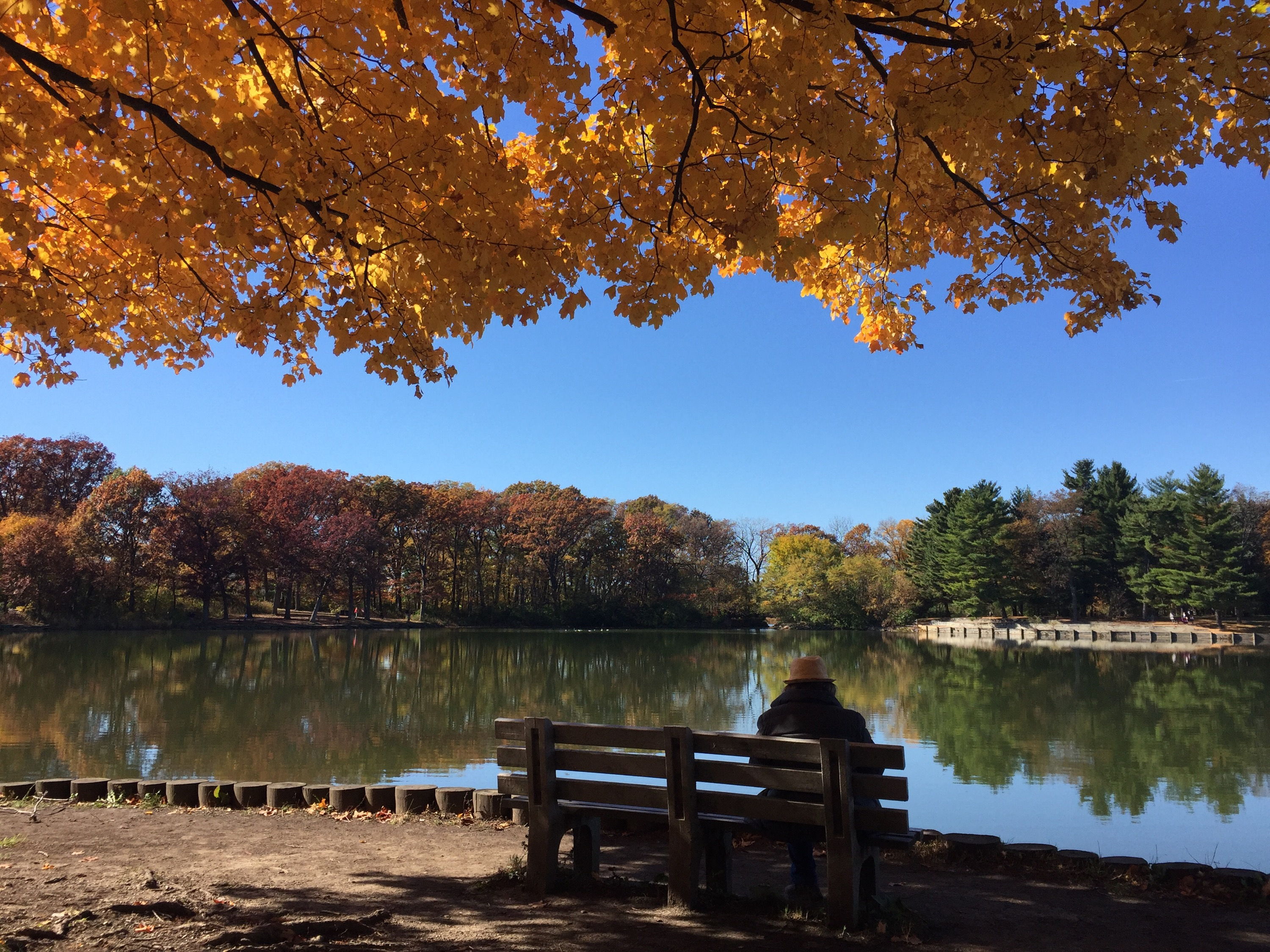 Autumn at Herrick Lake