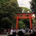 Shimogami Shrine's torii