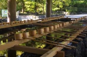 Ise Shrine Temizuya