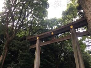 Close up of the torii