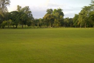 Permata Krakatau Golf Course Green