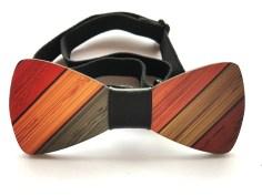 papillon in legno colorato