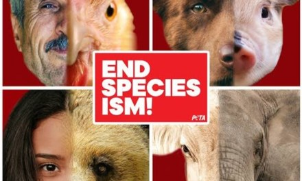 Does Superiority Means Exploiting Other Species?