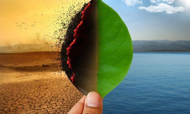 Global Warming- A Harsh Reality