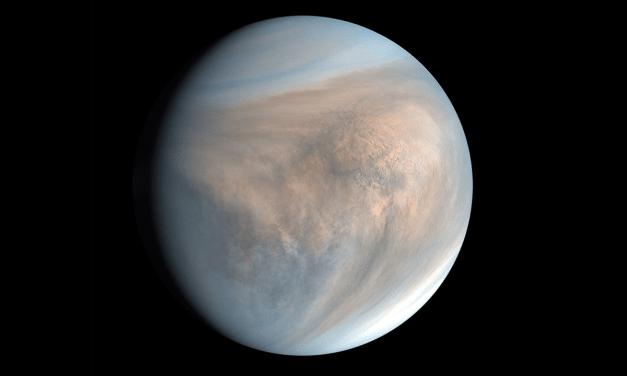 The secret of Venus may lie in its clouds. Life on Venus?