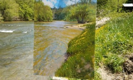 River Chillin  – @jeremy_sams_art