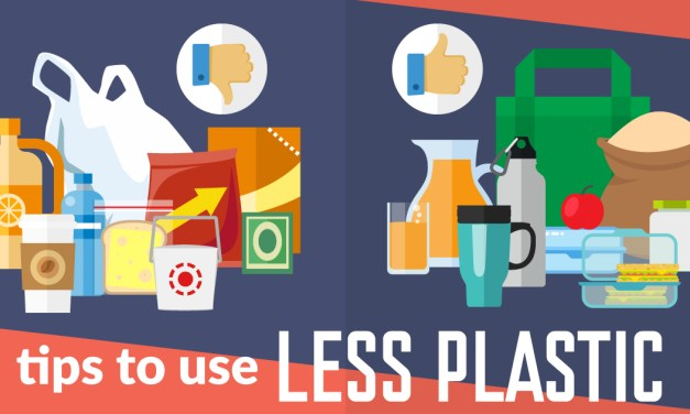 HOW TO USE LESS PLASTIC IN EVERYDAY LIFE