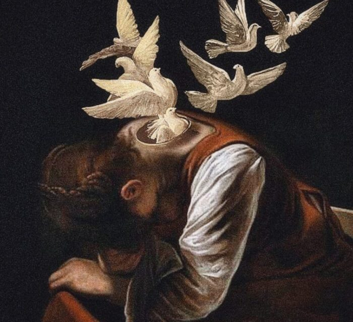 the birden – @vexed_works