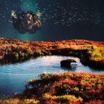 ariel – @kj_collage