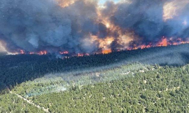 Wildfire ravaged Canada