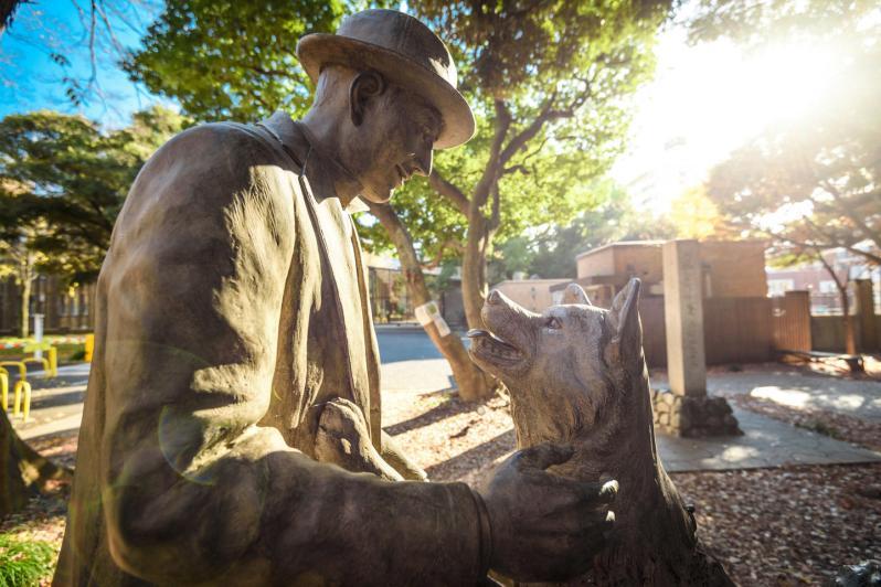 En staty föreställande Hachiko som återförenas med sin husse