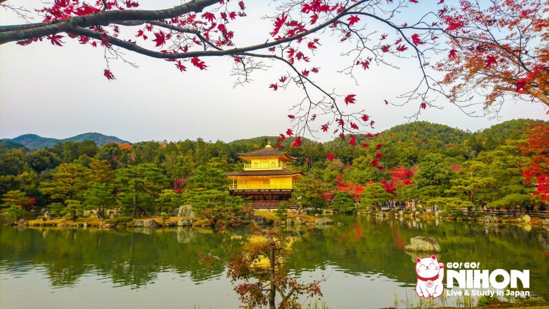 Kinkakuji Herbst in Japan