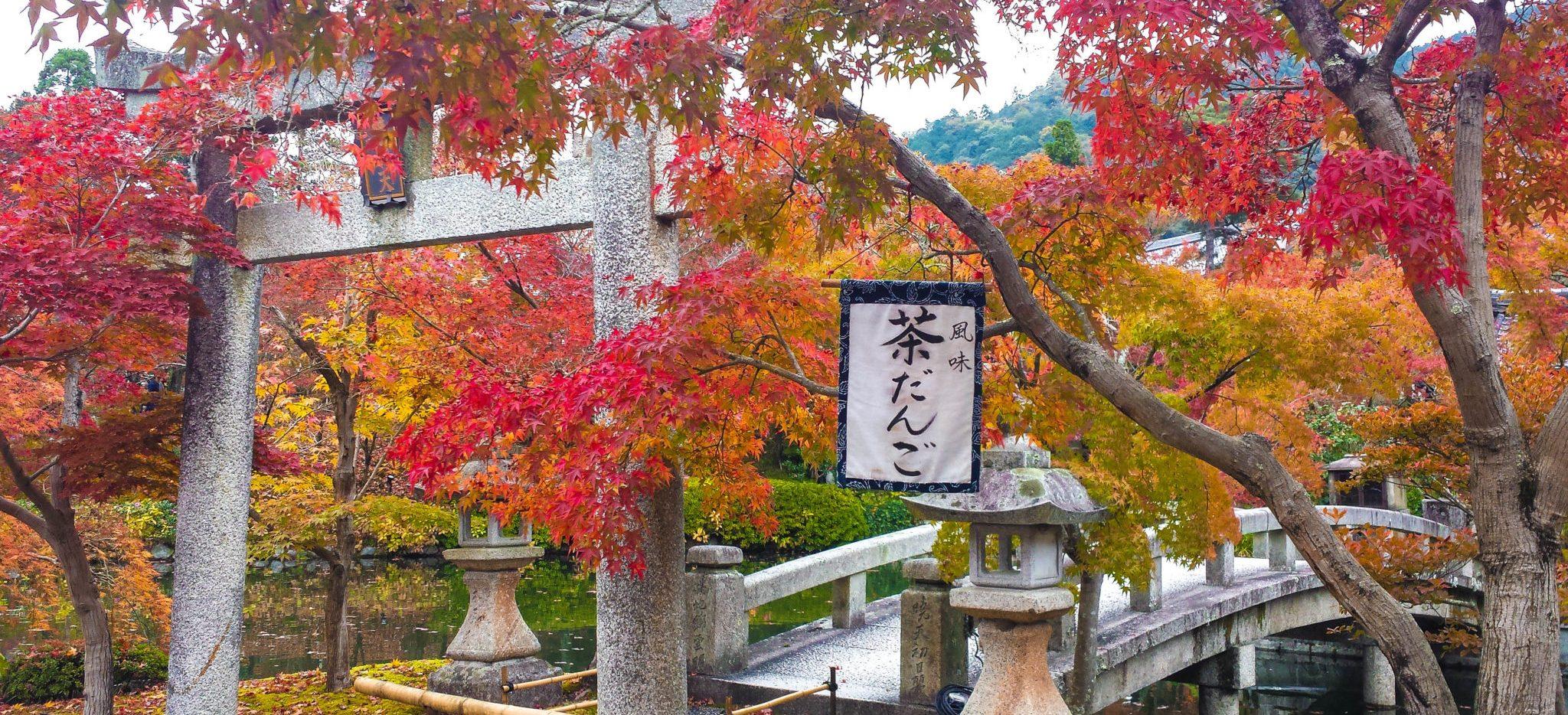 Herbst in Japan