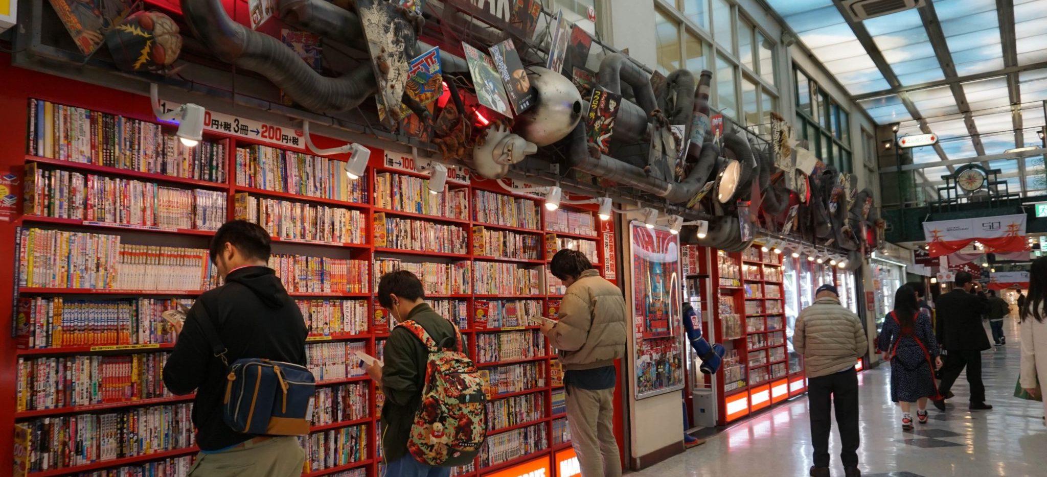 Manga- und Animekultur in Japan - Totoro