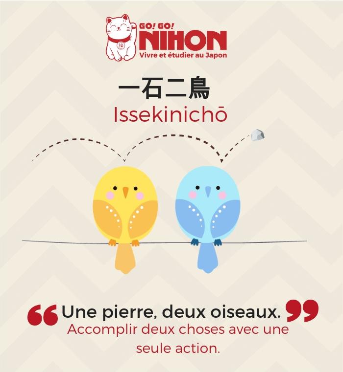 Proverb japonais deux oiseaux avec une pierre