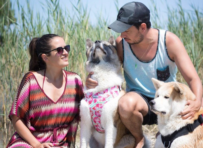 Family with two magnificient Akita