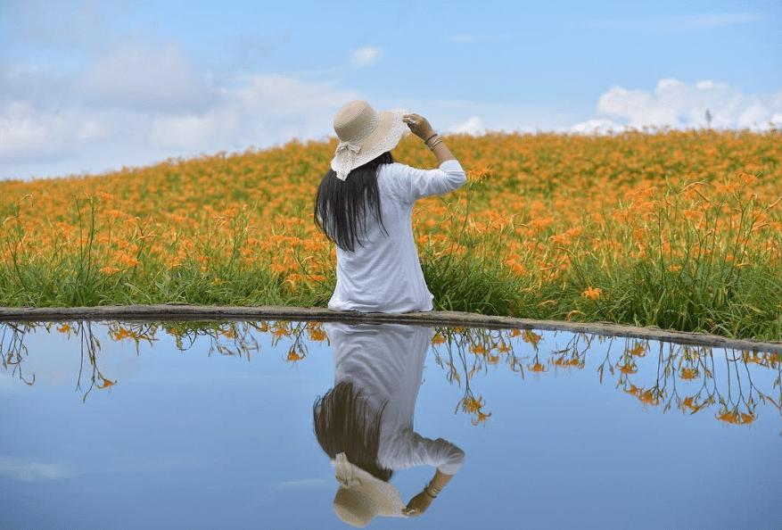 金針花季,花蓮六十石山,花蓮租車