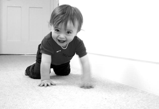 When do babies start to crawl?