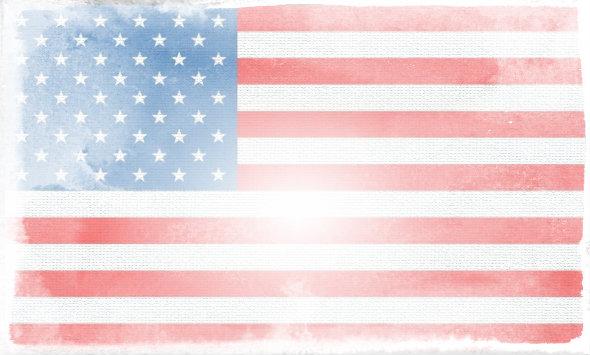 American flag faded. Gohireavet com jobs careers