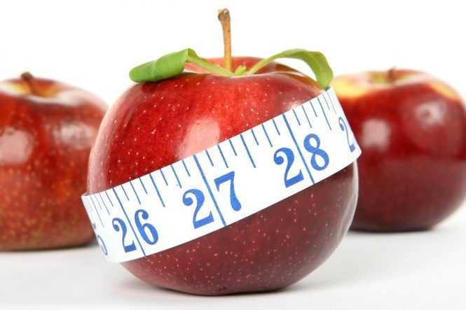 aplikasi untuk menghitung kalori makanan