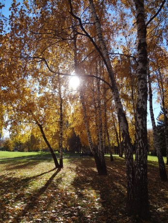 Autumn at Kolomenskoye