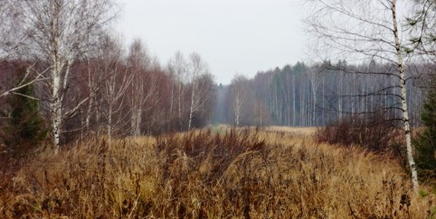 Russian countryside, rolling hills, forests.