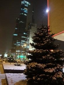 Natural-born yolka at Semyonovskaya