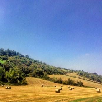 Rolling hills of Emilia Romagna 2
