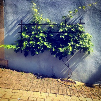 s Rothenburg 2