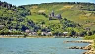 Rhine Valley 14