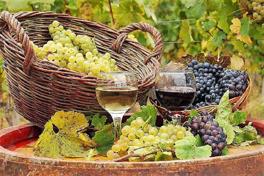 Glasses of wine against a backdrop of baskets and grapes