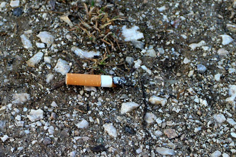 Bitucas de cigarro é danoso ao meio ambiente