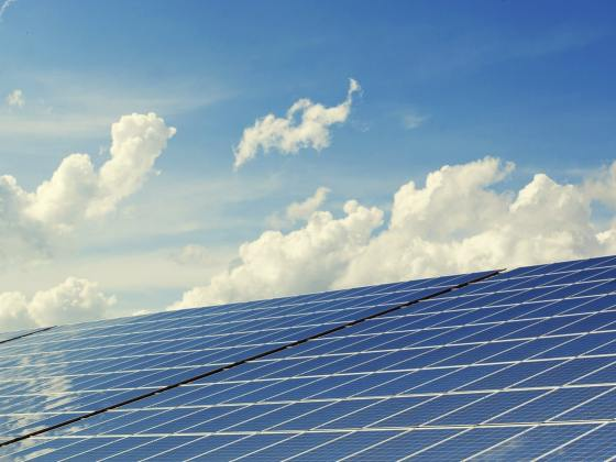 trina solar; painéis solares; energia fotovoltaica