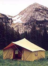 Going Nowhere Queerly-Camp It Up In The USA