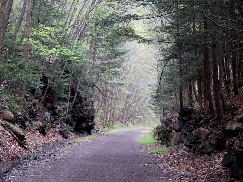 The Great Allegheny Passage reclaims a former rail line into a stunning 150-mile non-motorized trail returned to nature © 2016 Karen Rubin/goingplacesfarandnear.com
