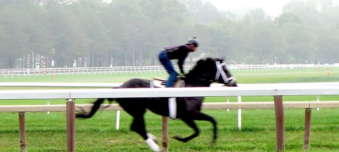 Saratoga Springs, Age-Old Mecca for Horse Racing, Gets Better with Age