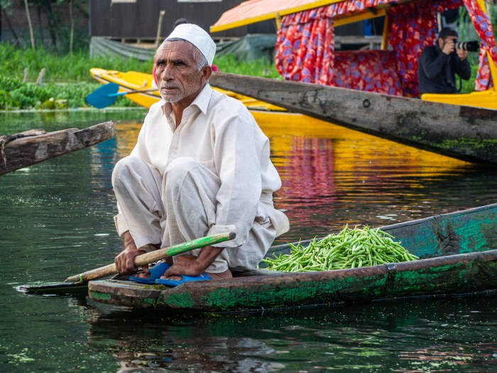 Dal lake floating market