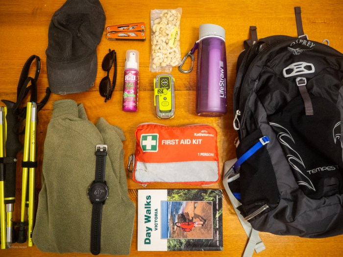 day hike packing