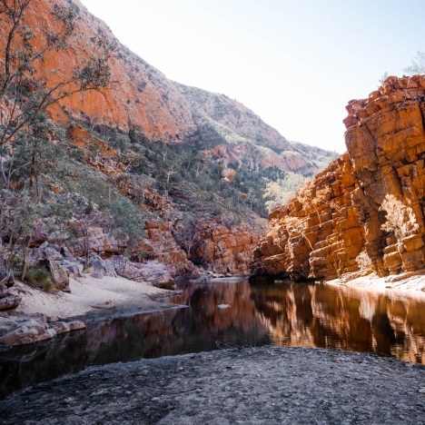 A Complete Guide to the West MacDonnell Ranges / Tjoritja