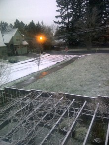 Snow in Portland 1