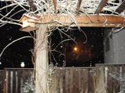 March 21 - Night snow