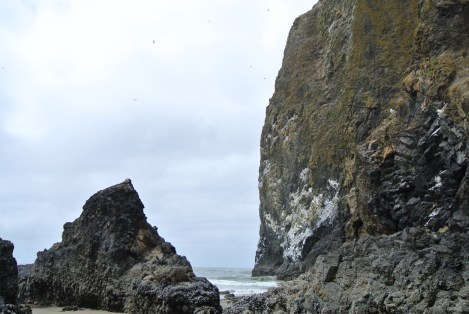 the south side of haystack rock