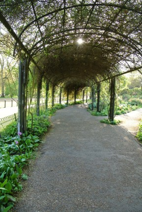 Hyde Park - Curved pergola archway shading a path