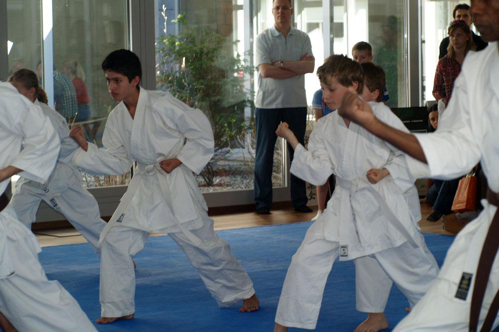 karatedemo-austellung-maerz-13