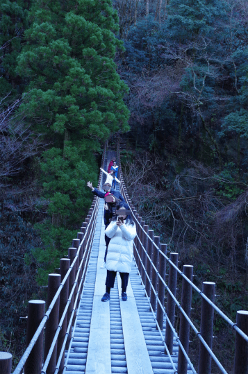 Momigi's suspension bridges