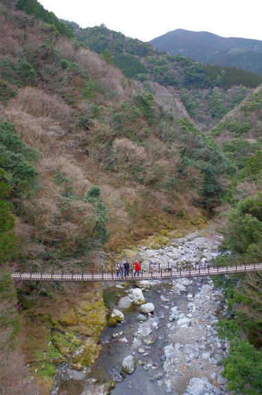 Momigi suspension bridges
