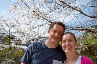 Sakura blossoms in Gokanosho